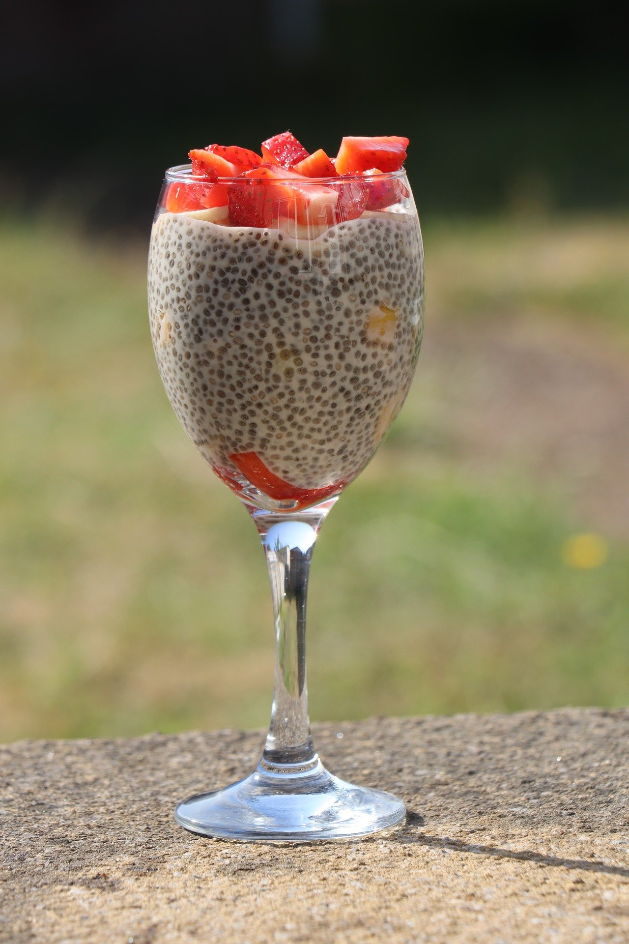 chia seed benefits and uses